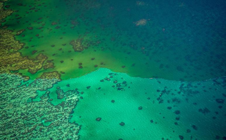 Áradás veszélyezteti a Nagy Korallzátonyt