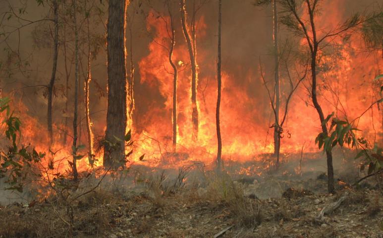 Lángol Ausztrália