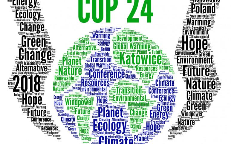 Jobban küzdenek a cégek a klímaváltozás ellen, mint a kormányok