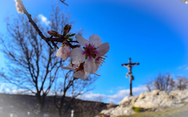 Szép tavaszi vasárnap