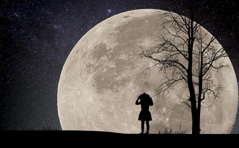 Irány a Hold!