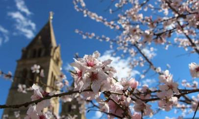 A tavasz Pécsett