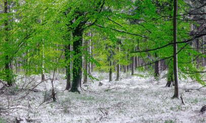 Áprilisi havazás