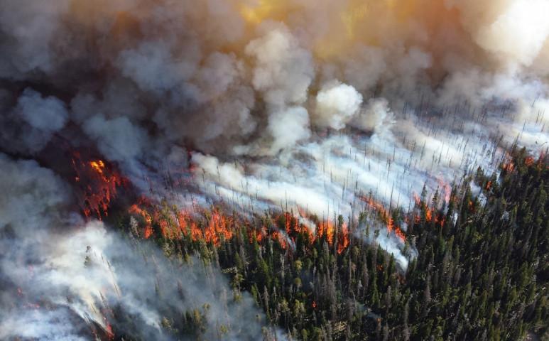 Már oltják a tűz egy részét Szibériában