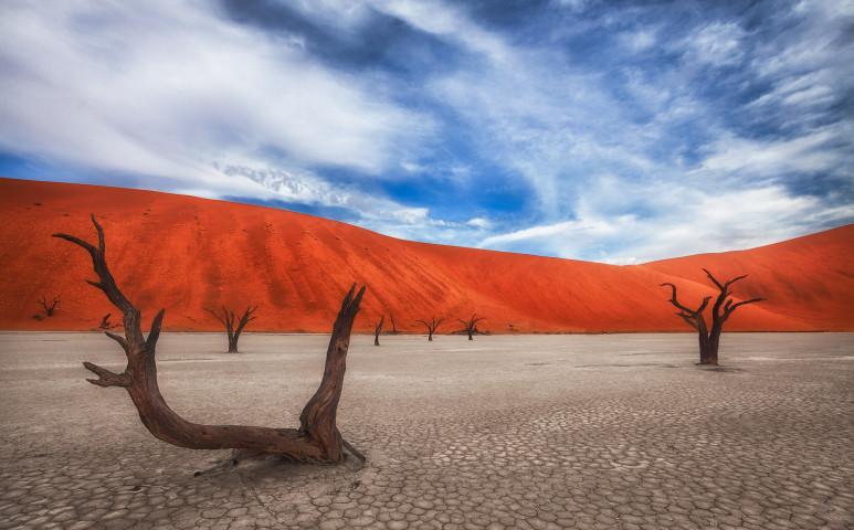 Sivatagból édenkert?