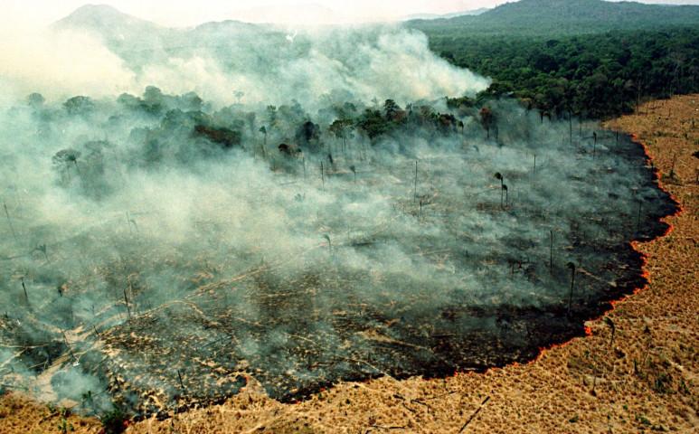 Lángol az brazil esőerdő