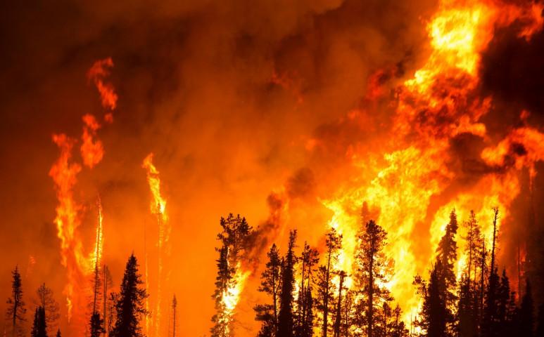 Megháromszorozódott az európai erdőtüzek száma