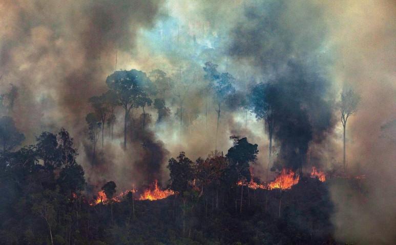 A tavalyinál mintegy négyszer több tűz tombol az Amazonas vidékén
