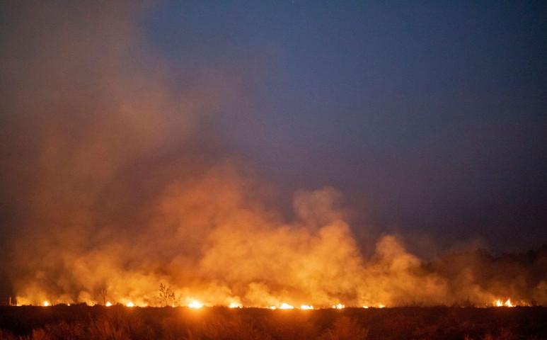 Általában gyújtogatás miatt vannak tüzek az amazóniai esőerdőben