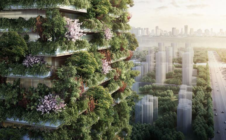 Erdőt a városba