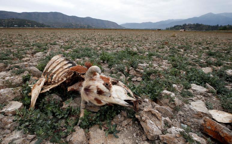 60 éve nem látott aszály sújtja Chilét