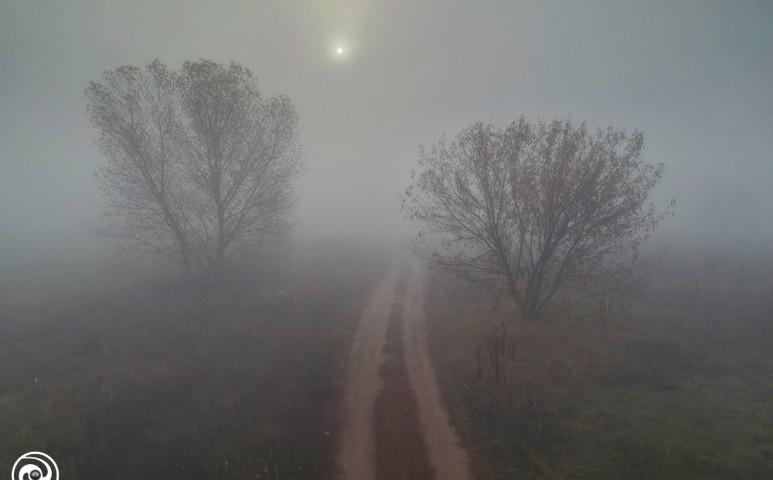 Reggel többfelé köd
