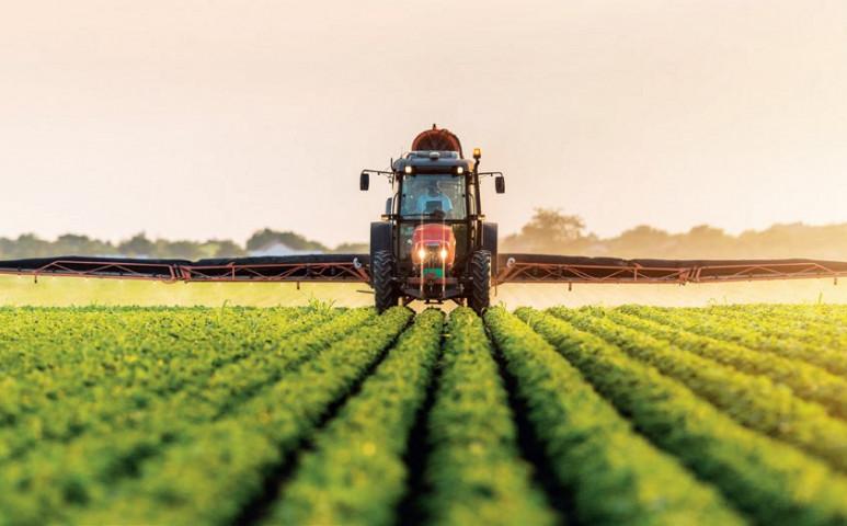 Mindent megöl az ipari mezőgazdaság
