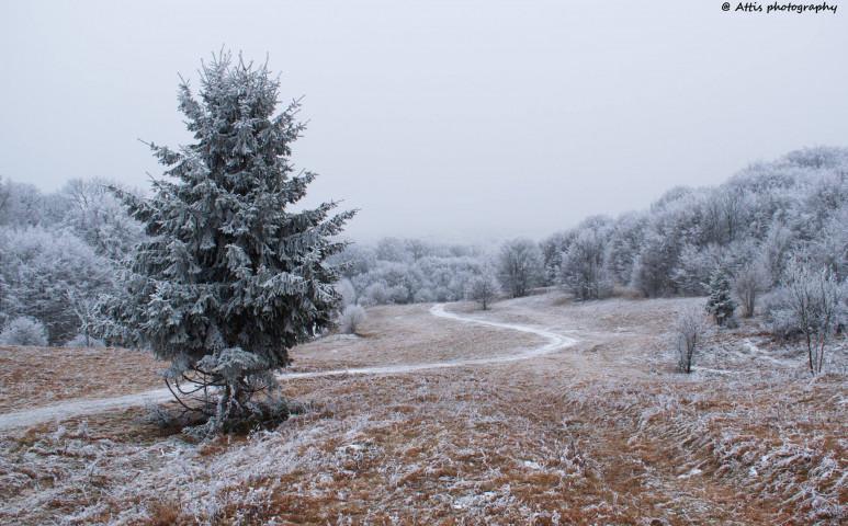 December első napjaira téli fordulat látszódik
