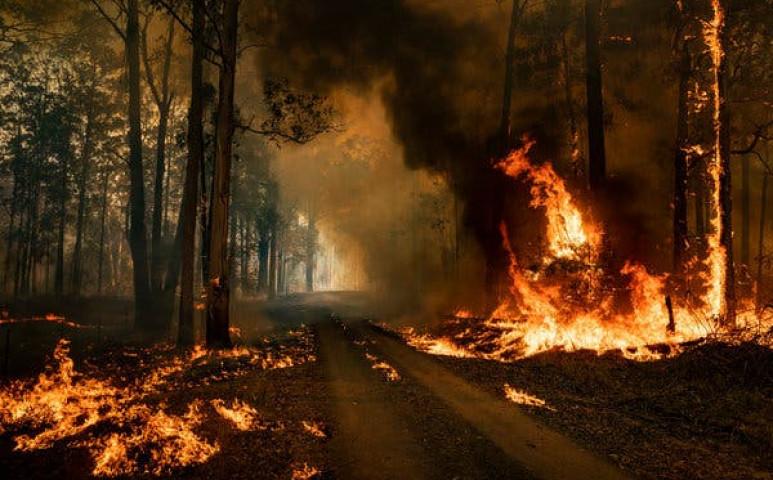 Mega tűzvész tombol Ausztráliában