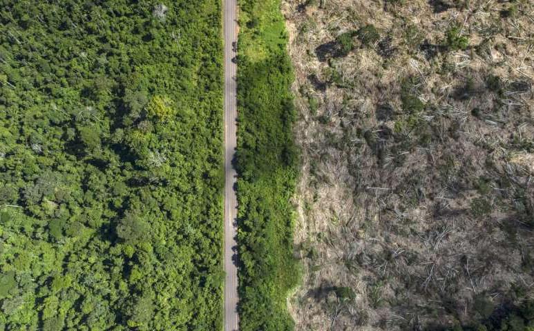 Újabb rekord mennyiségű területet pusztítottak ki az Amazonas-medencében