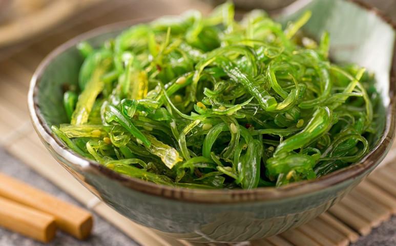 Az alga megoldást jelenthet az élelmezési válságra és a klímakatasztrófára is!