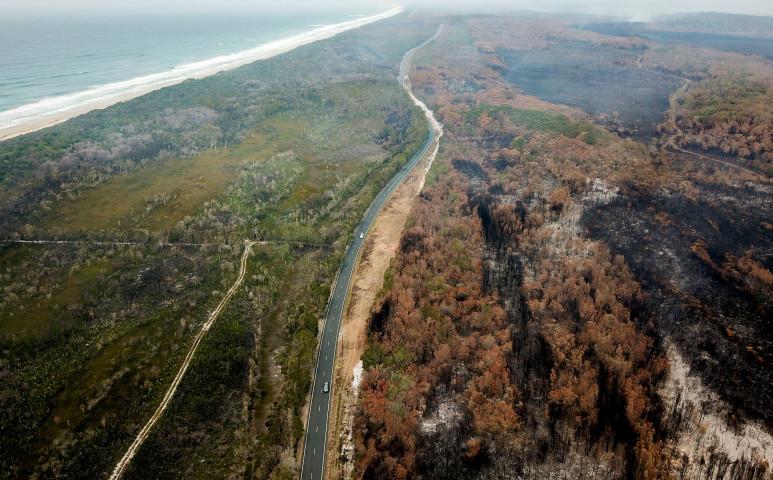 Az erdőtüzek miatt megváltozhat az ökoszisztéma Ausztráliában