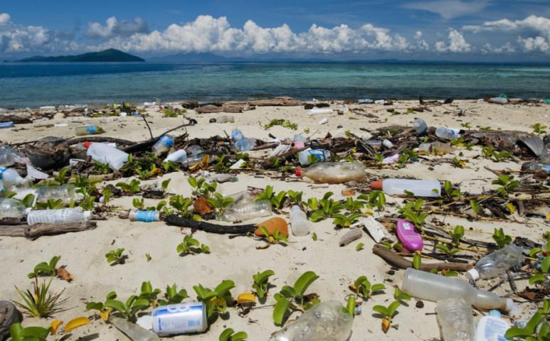 Megvan az eltűnt tengeri hulladék