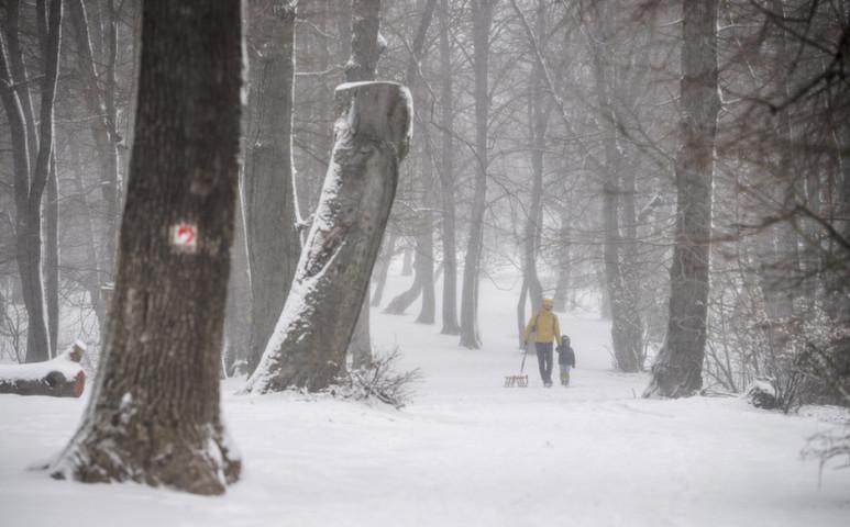 Néhol több, mint 20 cm hó hullott az országban