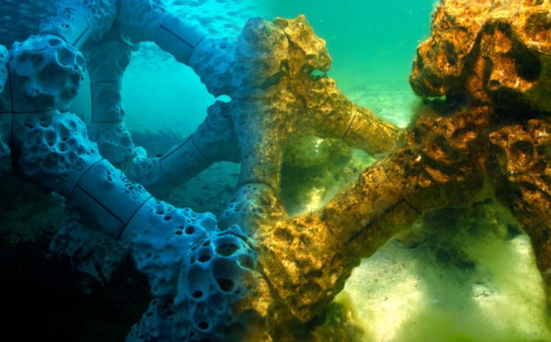 Nyomtatott korallzátonyoké a jövő?