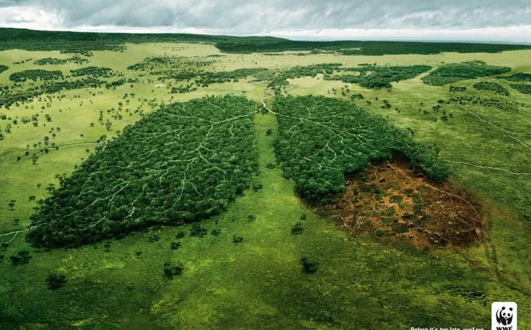 A Föld további kiaknázása újabb világjárványokat hozhat magával