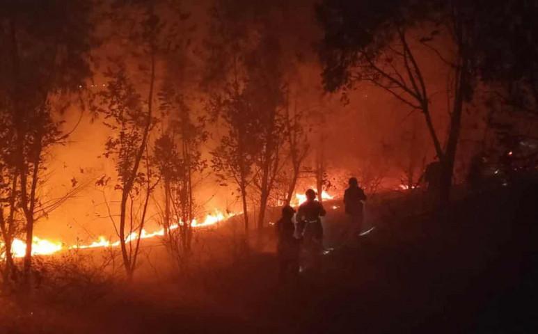Pusztító erdőtűz tombol Kínában