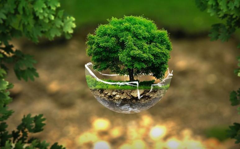 11 környezetvédelmi miniszter kéri, változtassunk végre a fejlődés irányán!
