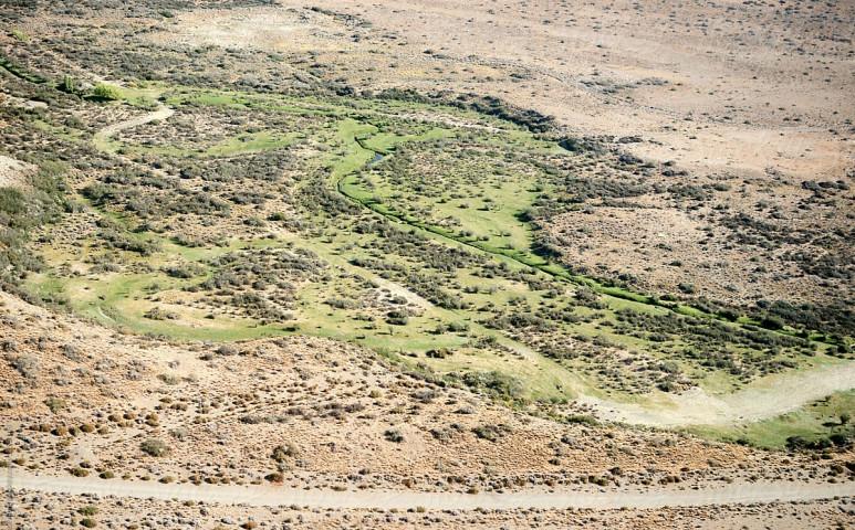 Kizöldült a világ egyik legnagyobb sivatagjának egy része
