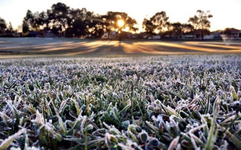 Újabb talajmenti fagy várható a hétvégére