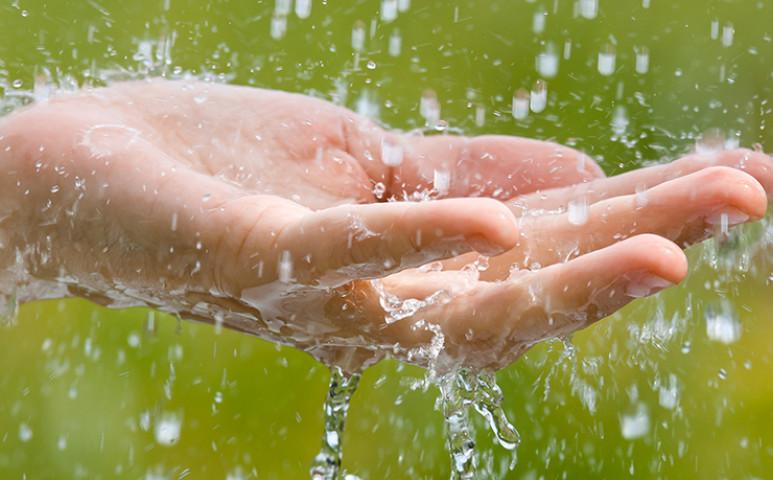 Az esővíz nem csak locsolásra jó!
