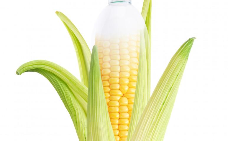 Kukoricapalackoké a jövő?