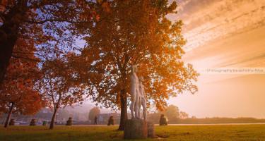 Őszi szobrok a napsütésben