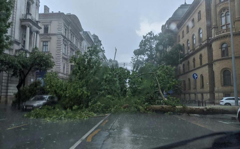 Elesett a tegnapi viharban a főváros és több vidéki település is