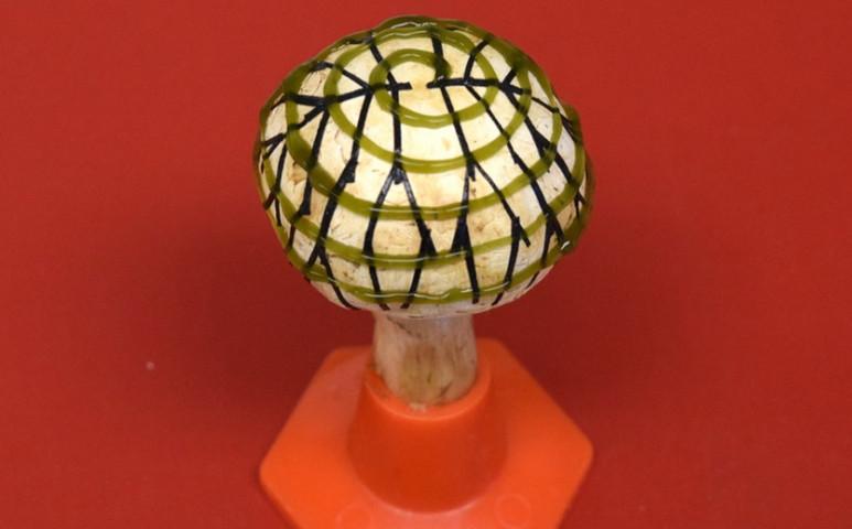 Szeretne gombával világítani? Lehet, hogy nem kell sokat várnia rá!