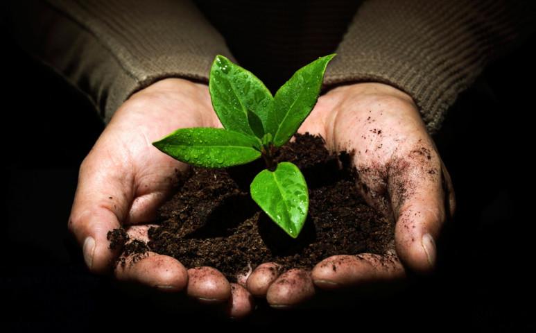Újra kiderült: nagyon jó üzlet a környezetvédelem, csak bele kellene fogni!