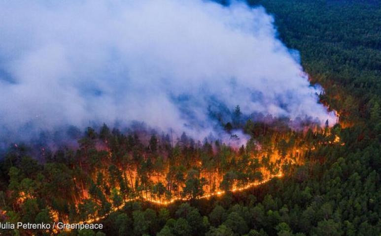 Folyamatosan lángol Szibéria, már 19 millió hektár  veszteség