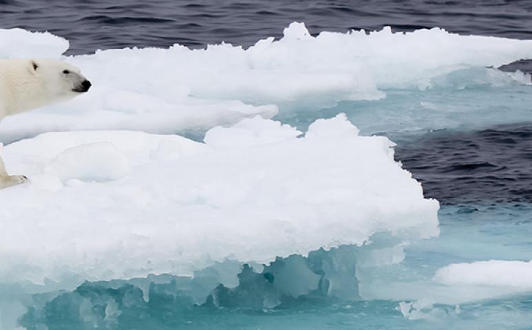 Megkezdődött a végjáték a klímaharcban