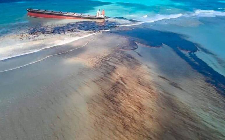 Mauritiuson kopaszok lesznek az emberek az olajkatasztrófa megfékezése érdekében