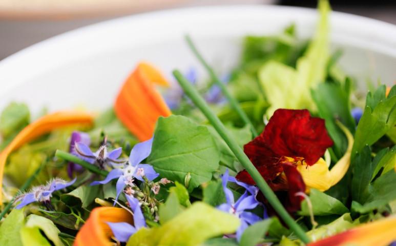 Virágok a tányéron, ízletesen