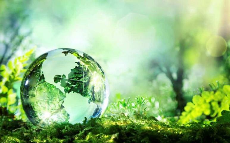 Pár egyszerű lépés a környezettudatosság felé