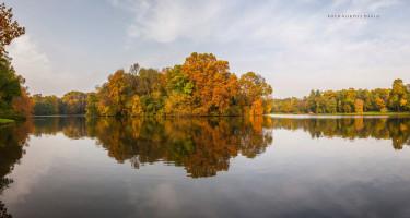 Őszi színek a vízben