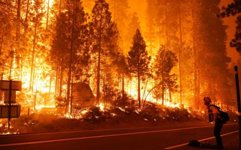 Rekordméretű területen, több, mint 800 000 hektáron lángol Kalifornia