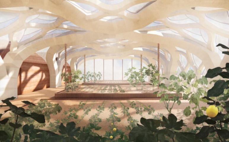 A bambusz üvegházé a jövő!