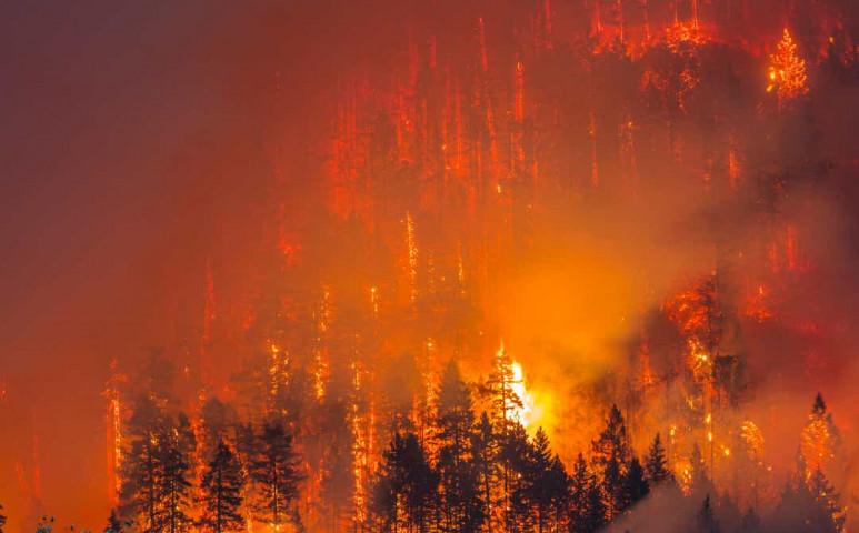 Soha nem látott méreteket öltött a tűz Oregonban