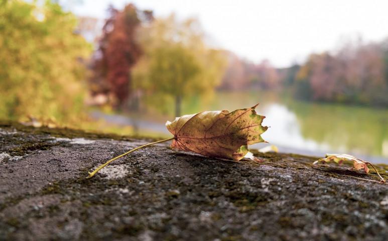 Érkezik az ősz, és végre esőt is hoz!