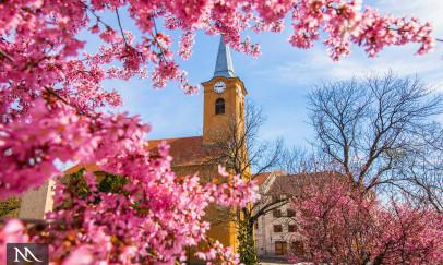 Tavasszal a templom