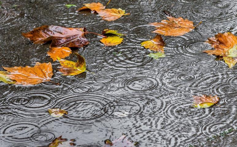 Kiadós esőket, viharos szelet hozhat a jövő hét