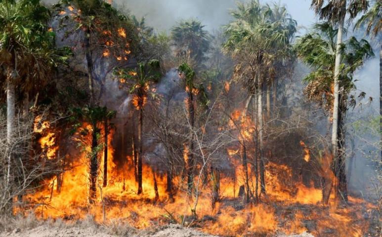 Lángokban áll Dél-Amerika is