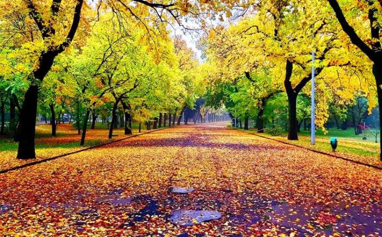 Borongós, igazi novemberi idő jön